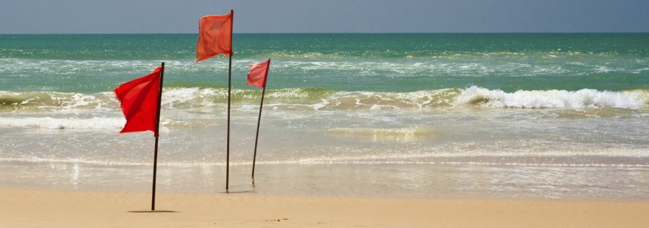 wbg-3-red-flags-new-company-culture.jpg